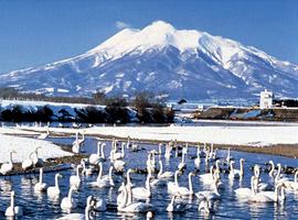 2月の山 岩木山(青森県)